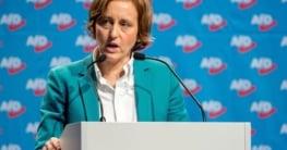 Beatrix von Storch sagt es sind zu viele Gays im TV
