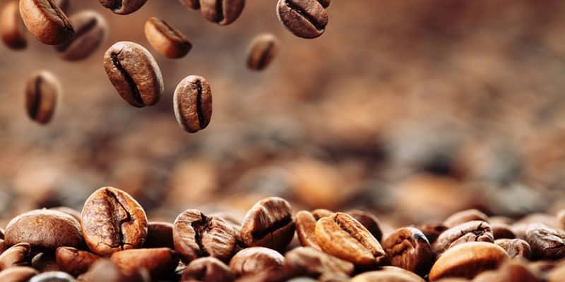 Tipp Nr. 3: die Kaffeebohne